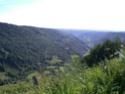 Entre Salers et le Puy Mary Cimg3325