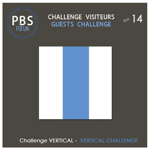 Challenge VISITEURS n°14 - Vertical Visite11