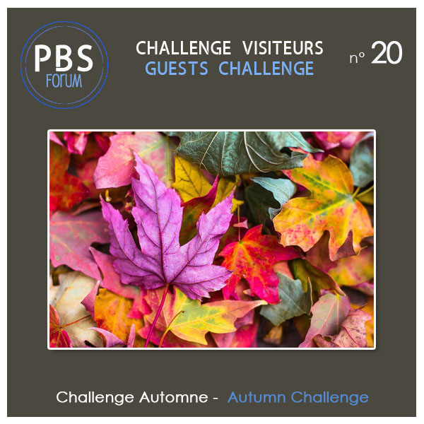 Challenge VISITEURS n°20 - Automne Visite17