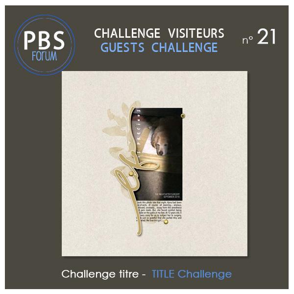 Challenge VISITEURS n°21 - Titre Visite18