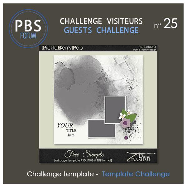 Challenge VISITEURS n°25- Template Visite22