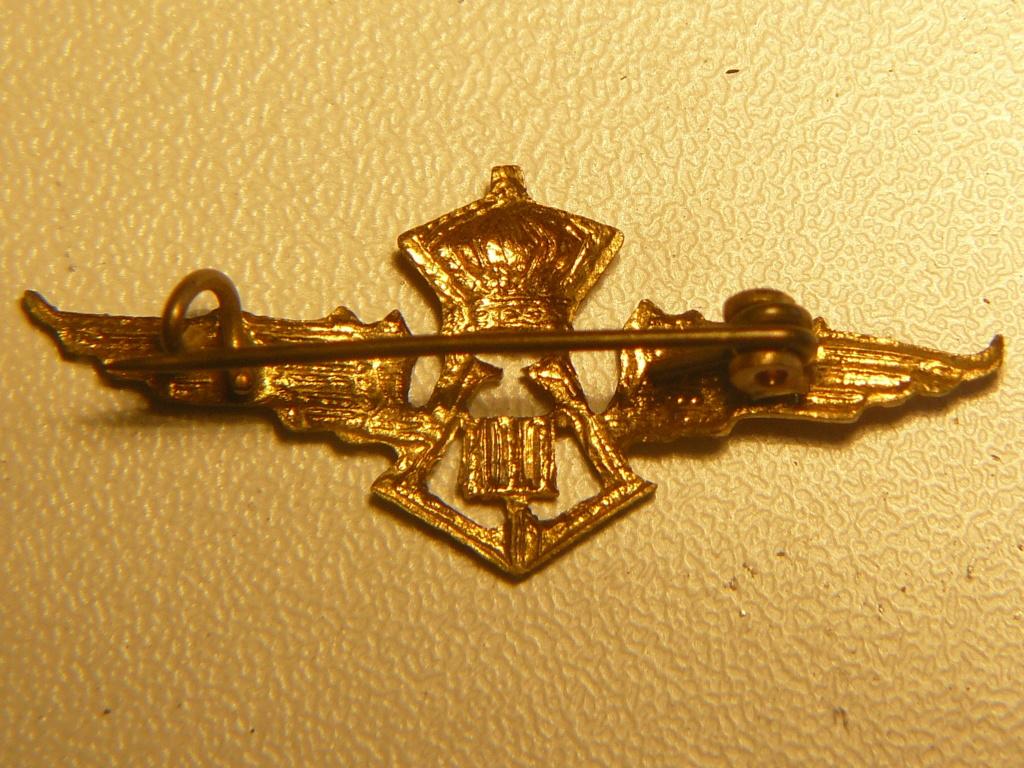 Wings Force Aérienne Belge 1930-1945 Leopol14