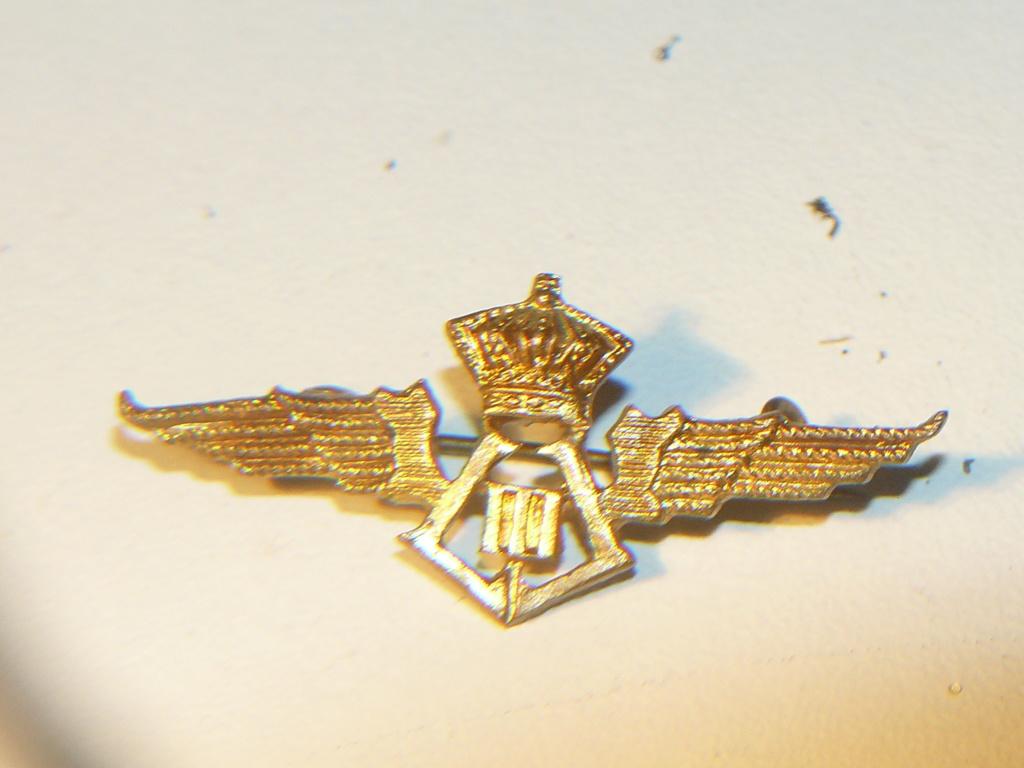 Wings Force Aérienne Belge 1930-1945 Leopol15