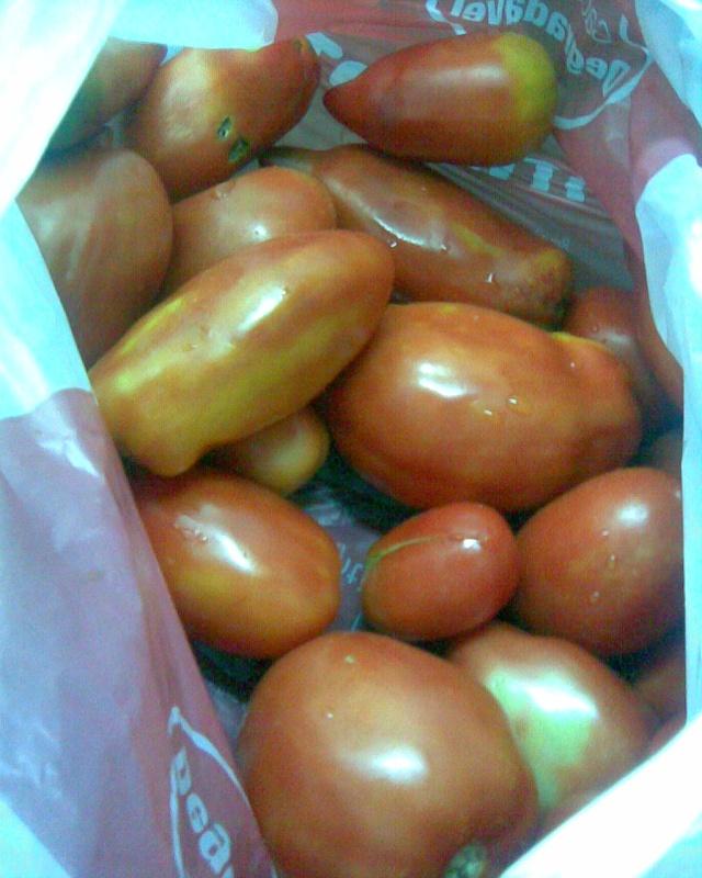 Congelar tomate maduro Img00810