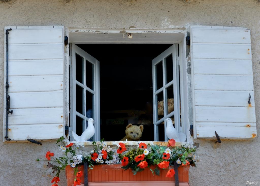[Fil ouvert ] Fenêtres, volets, ouvertures... - Page 11 Fenetr10