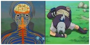 Ninjutsu Médical Ranshi11