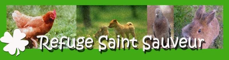 Le Refuge du Saint Sauveur