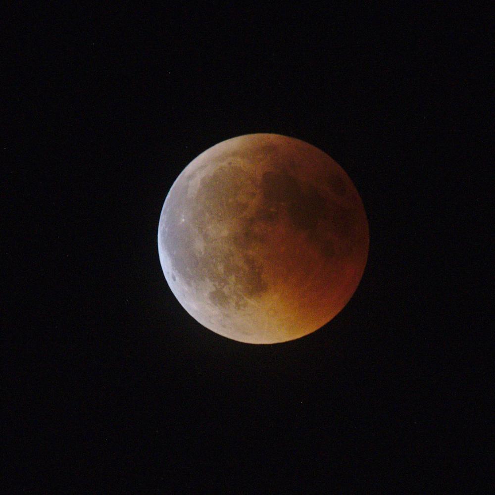 Lune provençale - Page 2 Dsc_4911