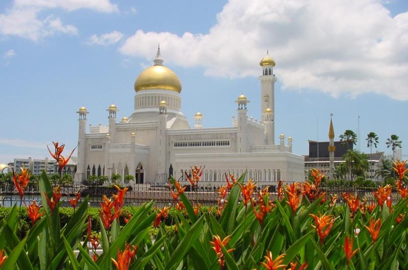 مسجد مصنوع بالذهب ادخل لترى و لن تصدق حيث الحقيقة تفوق الخيال 113