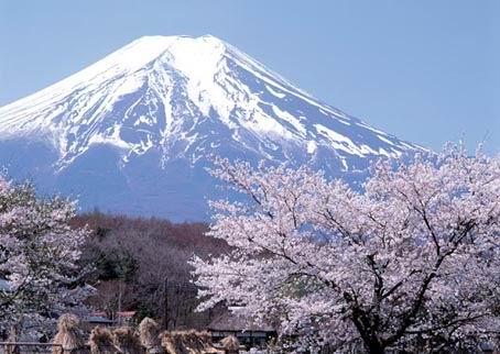 Jalan-jalan yuk... Fuji-m10