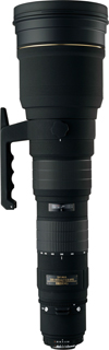 Ideal Lens for Avian Photography 300-8010