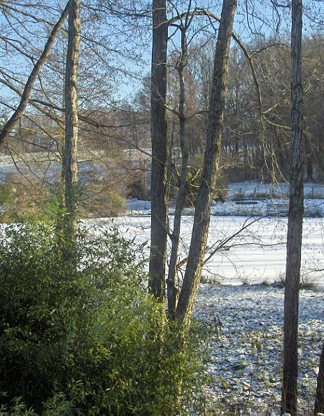 Votre photo pour Février 2009 Hpim7610