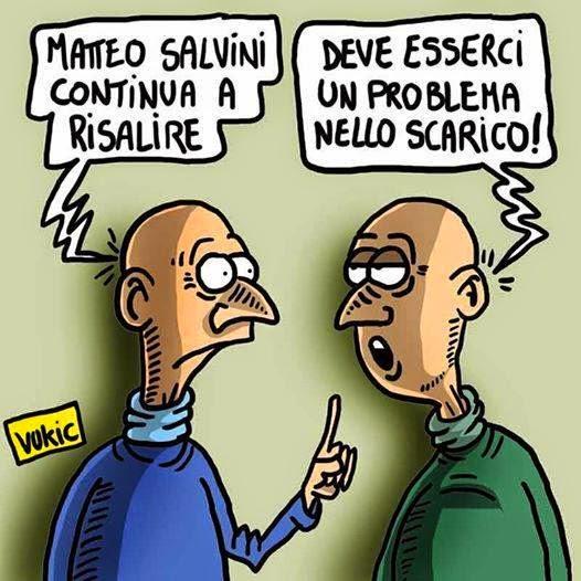 Salvini 56020410