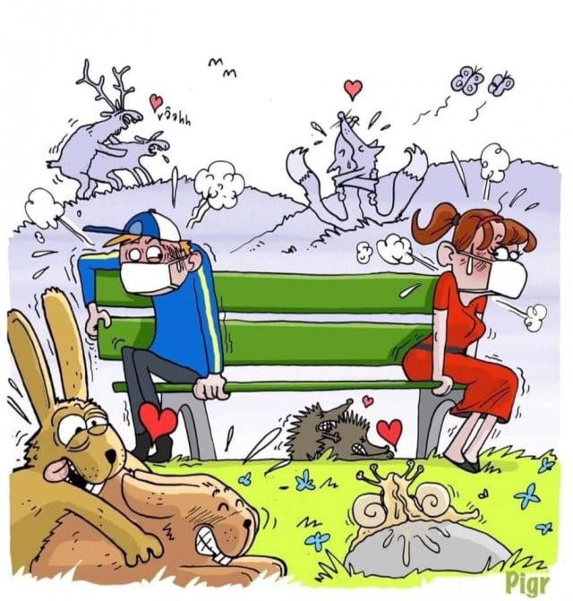 Immagini divertenti due - Pagina 26 Aea5mp10