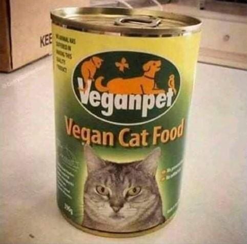 Cibo vegano  Canned10