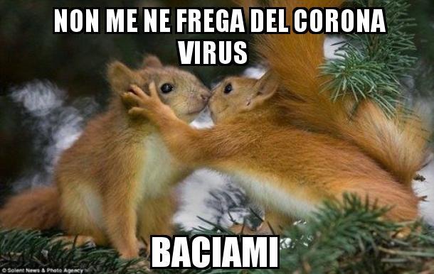 Gli scoiattoli non mangiano solo noccioline - Pagina 2 Img_259