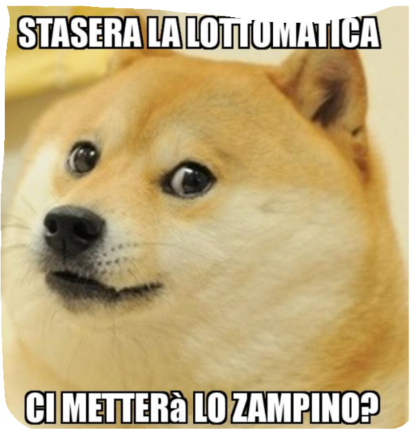 Paellotto Scree305