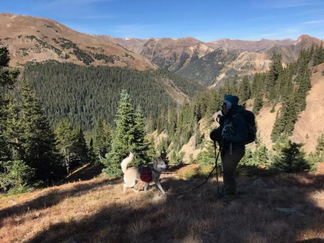 Hiking with dogs~Engelmann Peak Img_3010