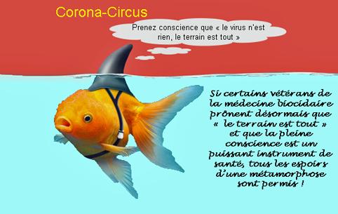 Tactique Coronavirus - Page 4 Poisso15