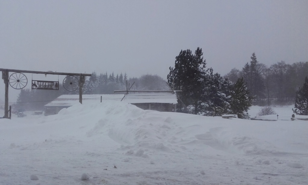 Hivernale du VERCORS  à Vassieux en Vercors (26)  les 1 , 2 et 3 février 2019 - Page 2 20190259