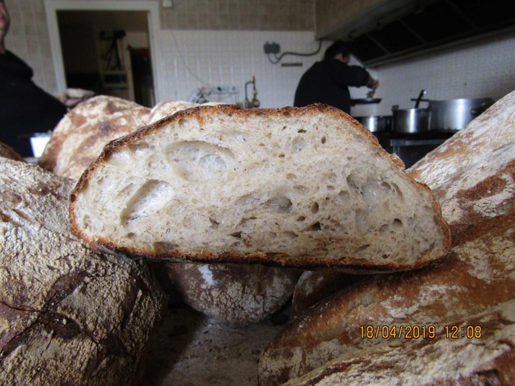 mon pain au levain , Img_0137
