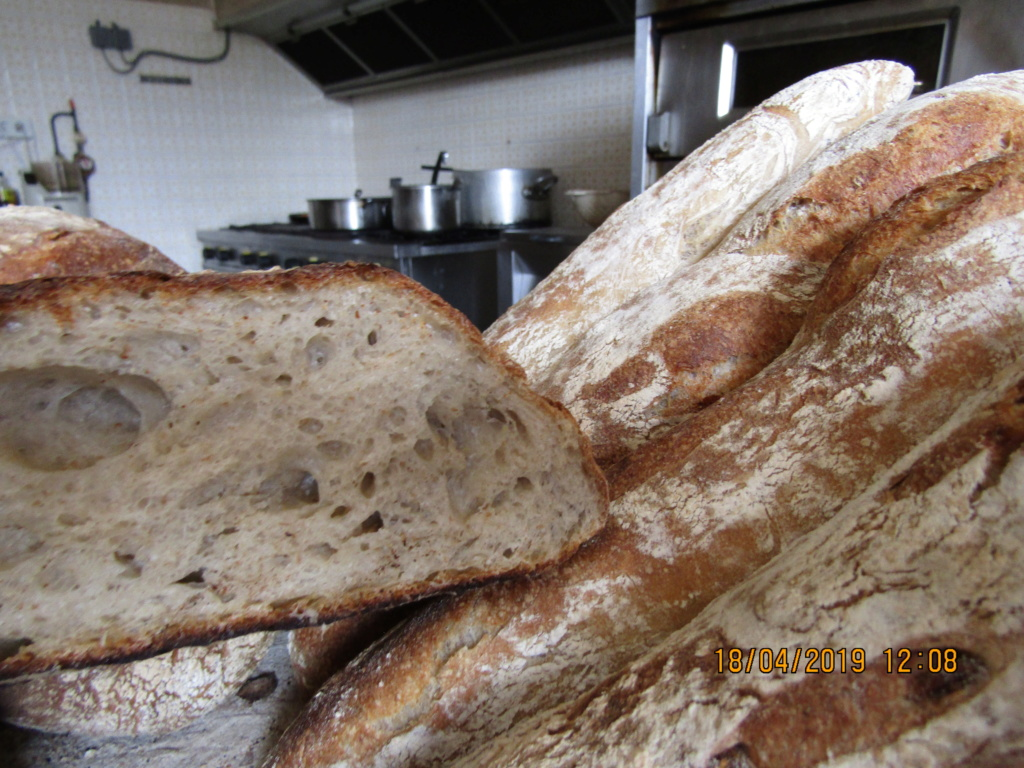 mon pain au levain , Img_0140