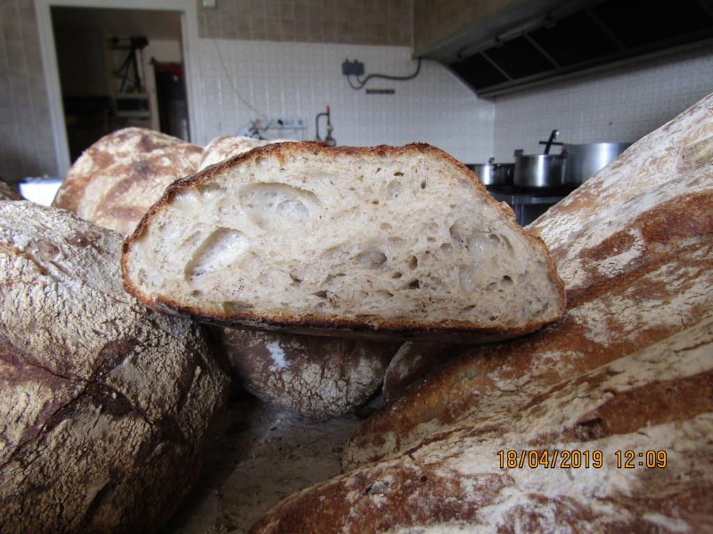 mon pain au levain , Img_0141
