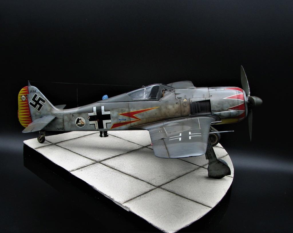 fw 190 A5 hasegawa  au 32.....  fini ...!!!! - Page 6 Img_6514
