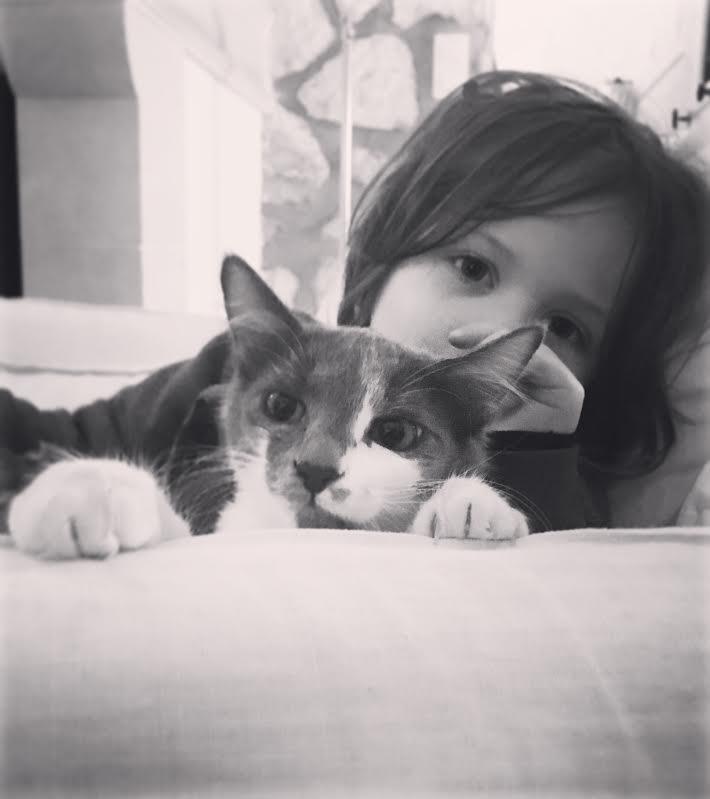 CHAMALLOW (Gaston) et CHATOUILLE (Kitty) 42179a10