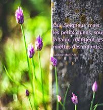 L'Evangile du jour... Prions, méditons. - Page 6 Les_pe10