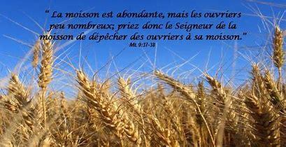 L'Evangile du jour... Prions, méditons. - Page 9 Mais_l10