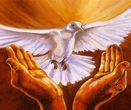 L'Evangile du jour... Prions, méditons. - Page 7 Nazytr10