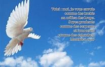 L'Evangile du jour... Prions, méditons. - Page 9 Voici_13