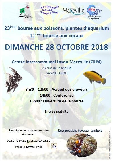 Bourse Champ le Boeuf (Laxou) 28 octobre 2018 Sans_t10