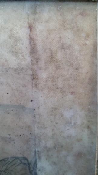 peinture sur soie avec taches de moisissure 20191259