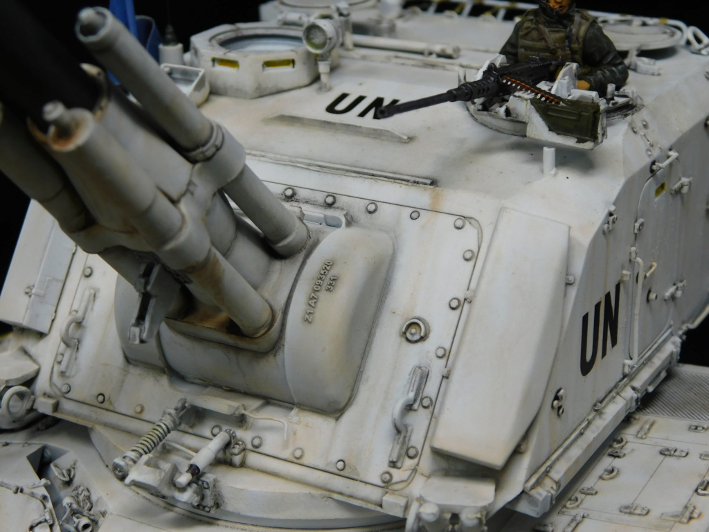 AMX 30 AUF1 TA MENG  1/35  TERMINE Dscn1018
