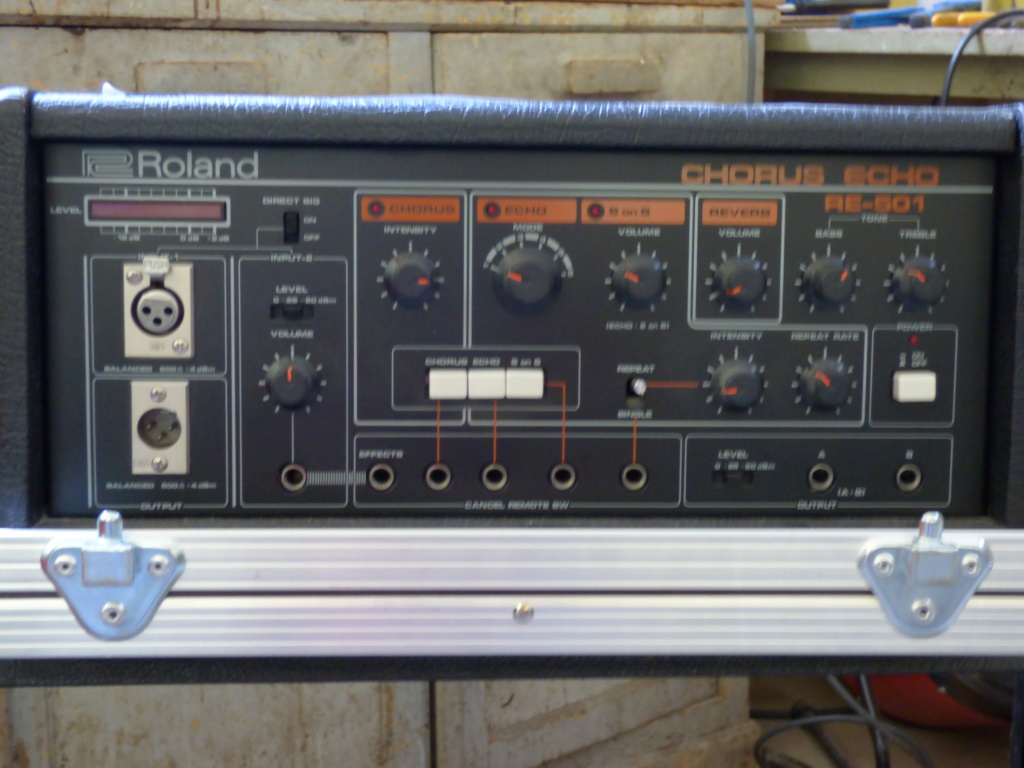 Je lache mon Roland RE501 ! P1050310