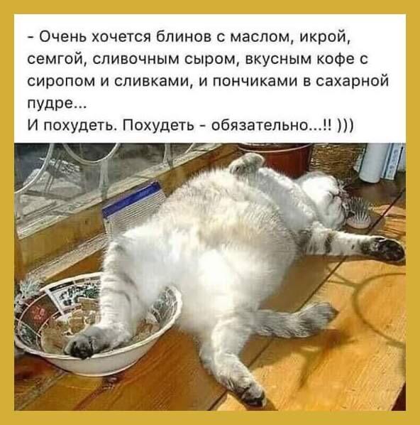 Выпуск 5. Февраль. Масленница Jqcbaj10