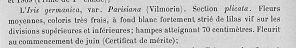 Les Iris plicata - une longue histoire et un bel exemple d'évolution - Page 2 Iris11