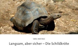 SWR 2, radio culturelle allemande - Page 21 Scre1251