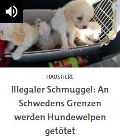 SWR 2, radio culturelle allemande - Page 23 Scre1675