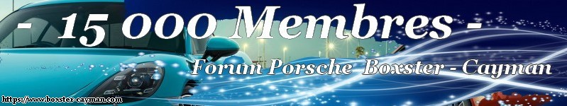 Presentation Porschiste Normand Blue-s10