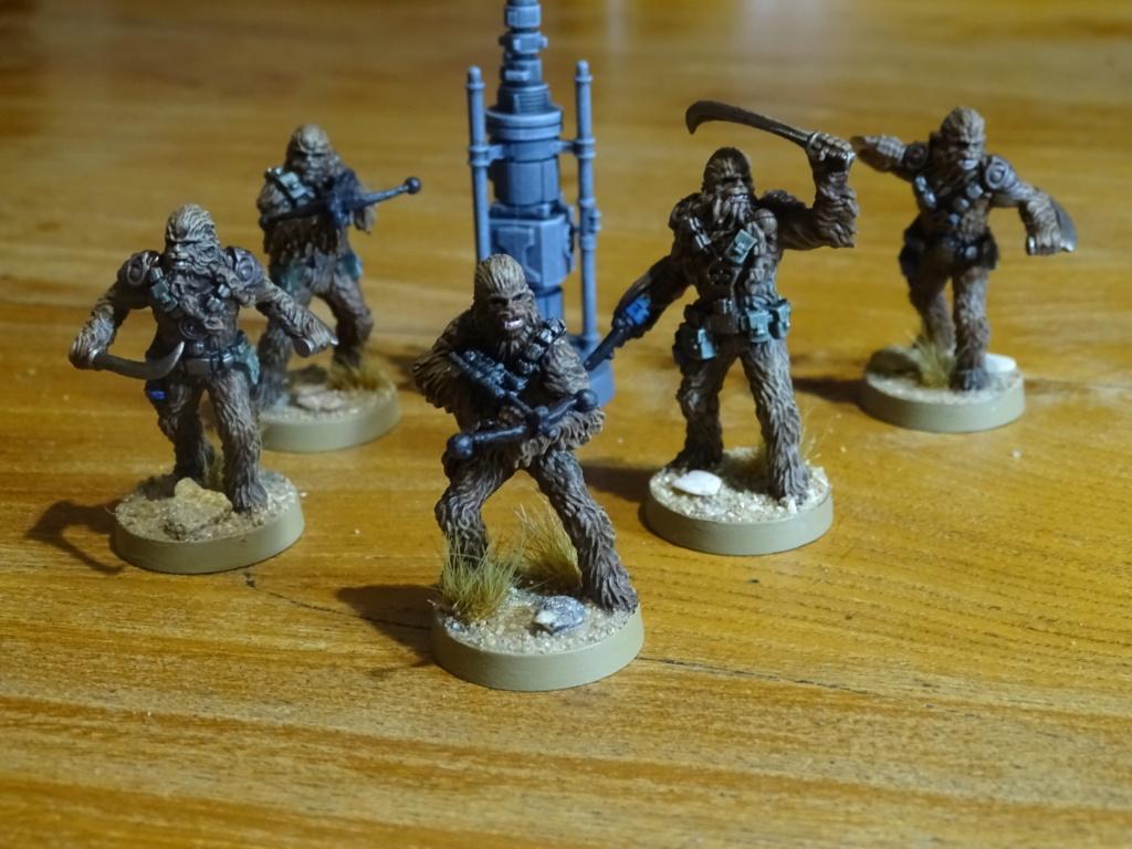 Gardes royaux et guerriers wookies.  Dsc00323