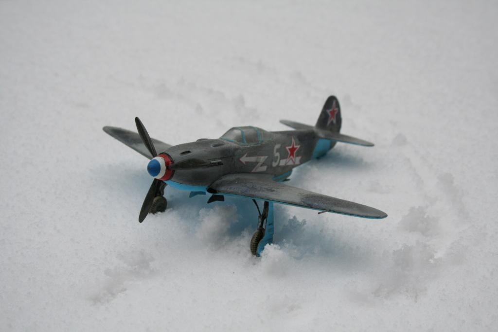 un petit visuel sous la neige Img_3563