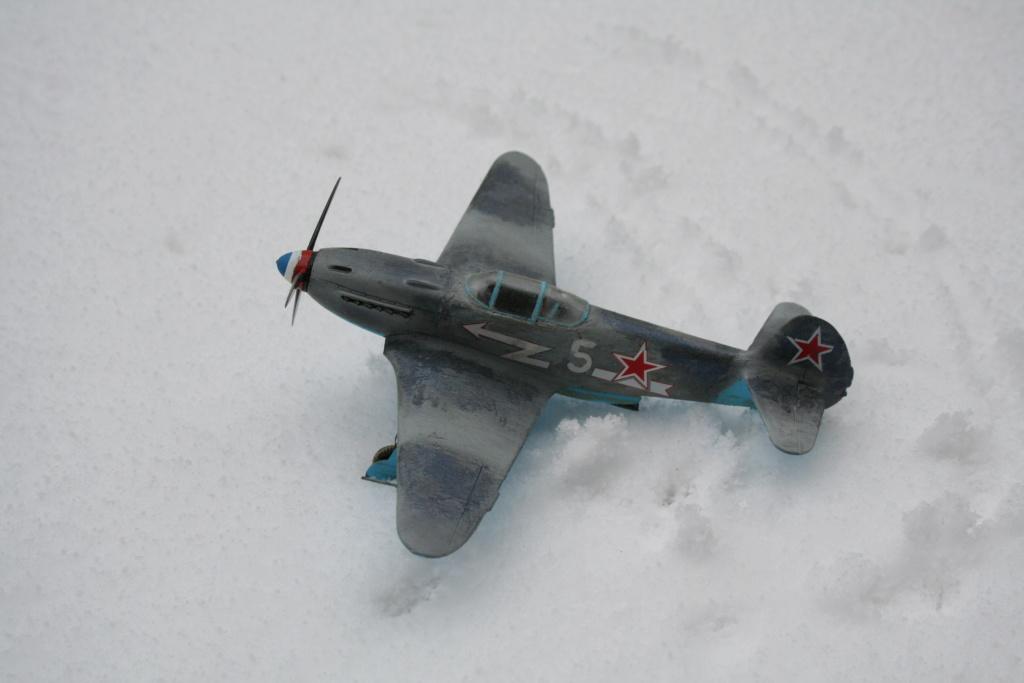 un petit visuel sous la neige Img_3564
