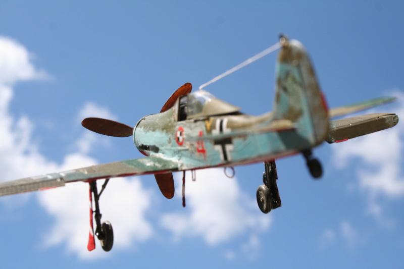 106/ Le dernier des aigles Fw 190 D11 Img_4169