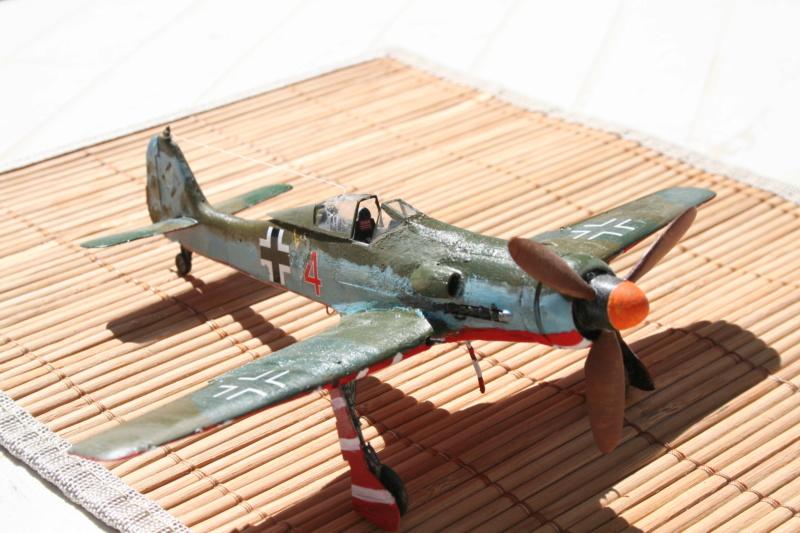 106/ Le dernier des aigles Fw 190 D11 Img_4171