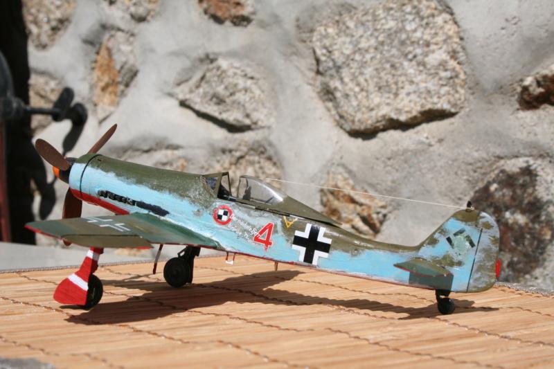 106/ Le dernier des aigles Fw 190 D11 Img_4172