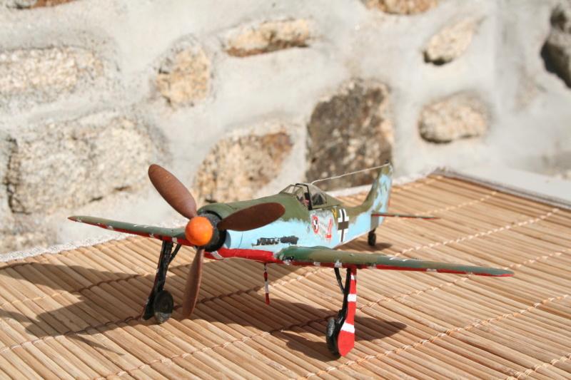 106/ Le dernier des aigles Fw 190 D11 Img_4175