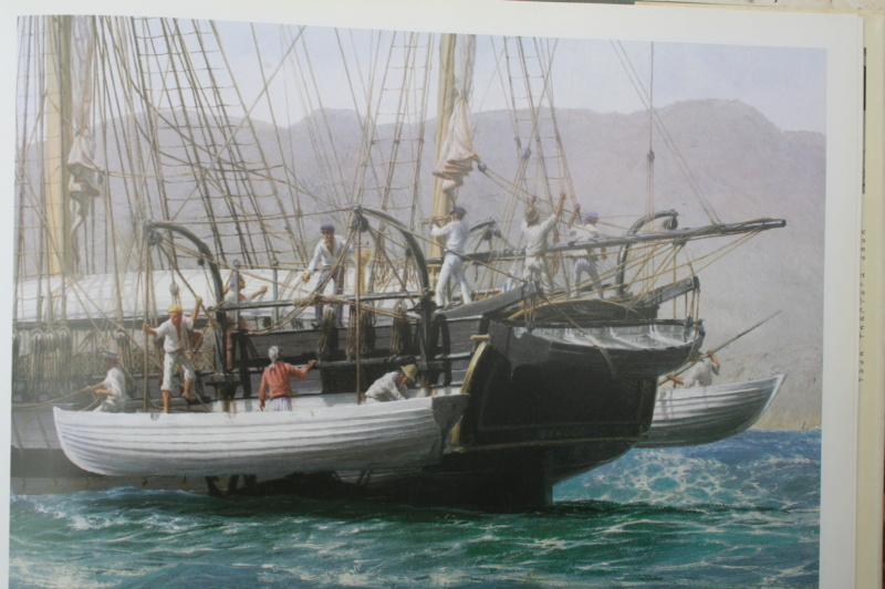 HMS BEAGLE (base OcCre 1/60°) par dorémifa Img_6219